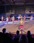 Sainté Gym Show Pôle France Saint-Etienne 27
